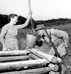 Mátraballa, 1958. augusztus 9. Dudás Mihály kerületvezetõ erdész lett a nemti erdõgazdaságban, ahol csemetekertjében vízzel kínálja õt az egyik csemeteápolólány. MTI Fotó: Bereth Ferenc
